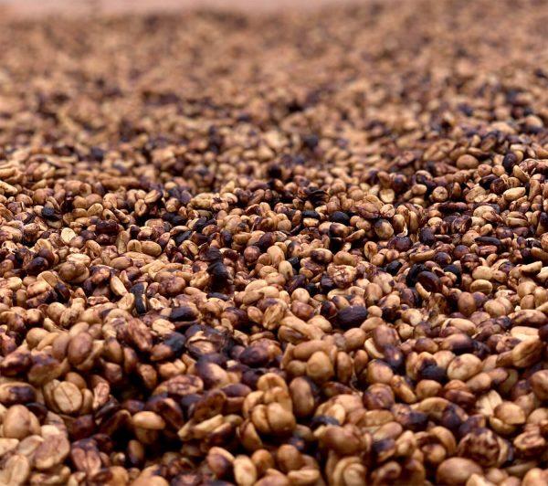 Халлінг і експорт купити натуральну каву